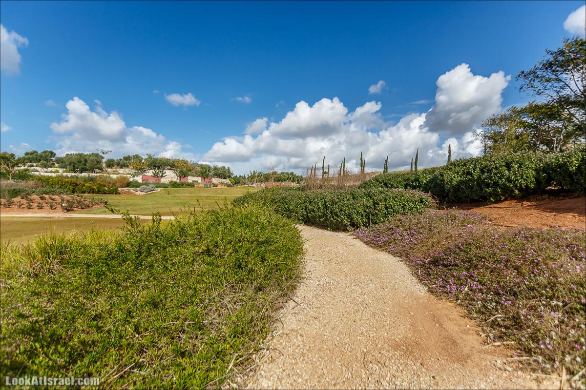 Самый большой парк в Израиле (имени Ариэля Шарона) на вершине мусорной свалки Хирия | Ariel Sharon park at trash heap Hiriya |פארק אריאל שרון בחירייה | LookAtIsrael.com - Фото путешествия по Израилю