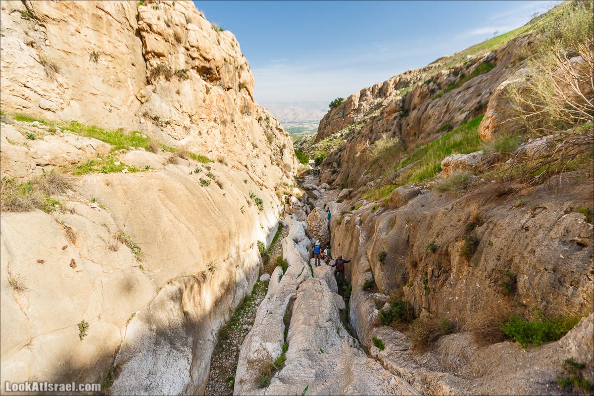Ущелье Вади Фиран в заповеднике Умм Зука | Wadi Feiran | ואדי פיראן | LookAtIsrael.com - Фото путешествия по Израилю