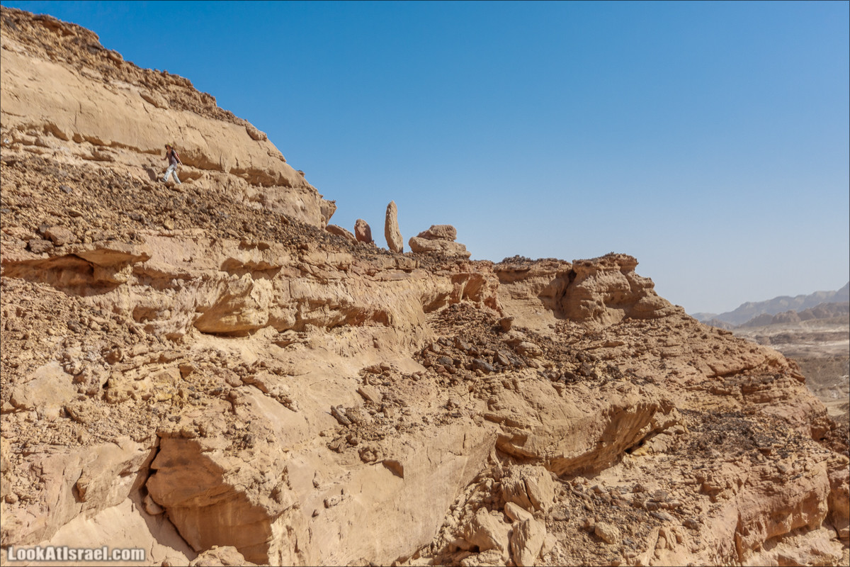 Хайкинг по тропе каньонов, дюна, ущелья и горы в долине Тимна | LookAtIsrael.com - Фото путешествия по Израилю