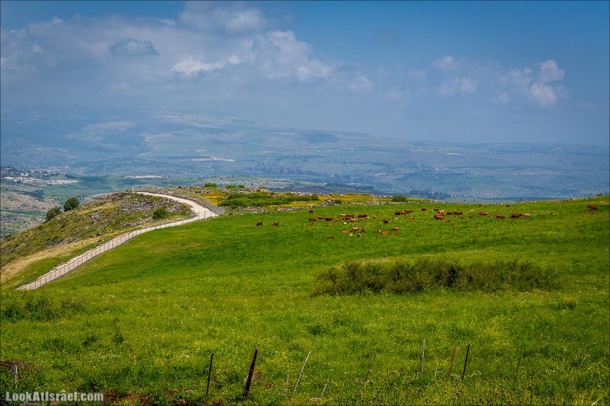 Дорога благой вести. От Карней Хитин к Кинерету | LookAtIsrael.com - Фото путешествия по Израилю