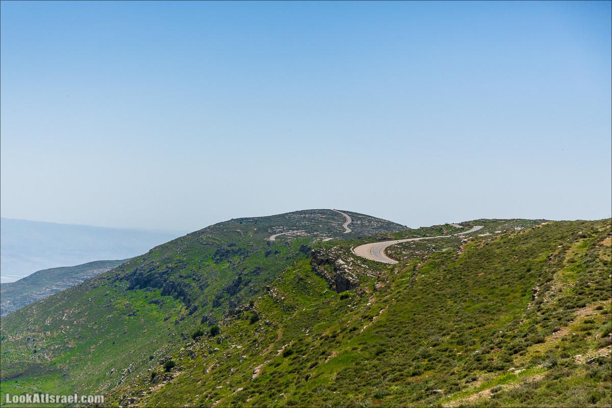 Гора Кабир и цветение самарийского ириса   הר קביר ואירוס שומרוני   LookAtIsrael.com - Фото путешествия по Израилю