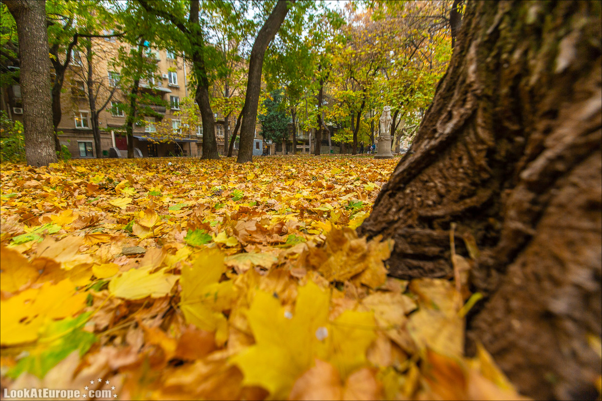 Осень в Одессе | LookAtIsrael.com - Фото путешествия по Израилю