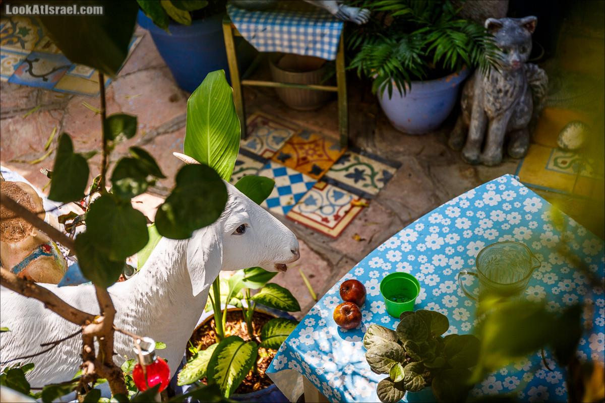 Крошки Тель-Авива - Случайные фотографии из жизни игрушек и двориков   LookAtIsrael.com - Фото путешествия по Израилю