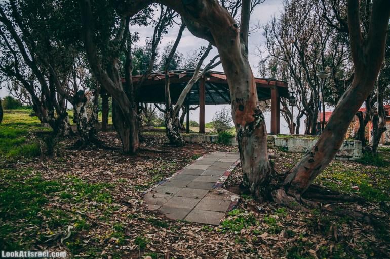 Побережье от Шфаим до Арсуф и Зеленая галерея - парк Дина - Сад скульптур на природе | LookAtIsrael.com - Фото путешествия по Израилю