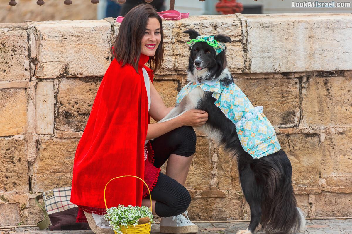 Праздник Пурим для собак...? хммм... Почему бы и нет?