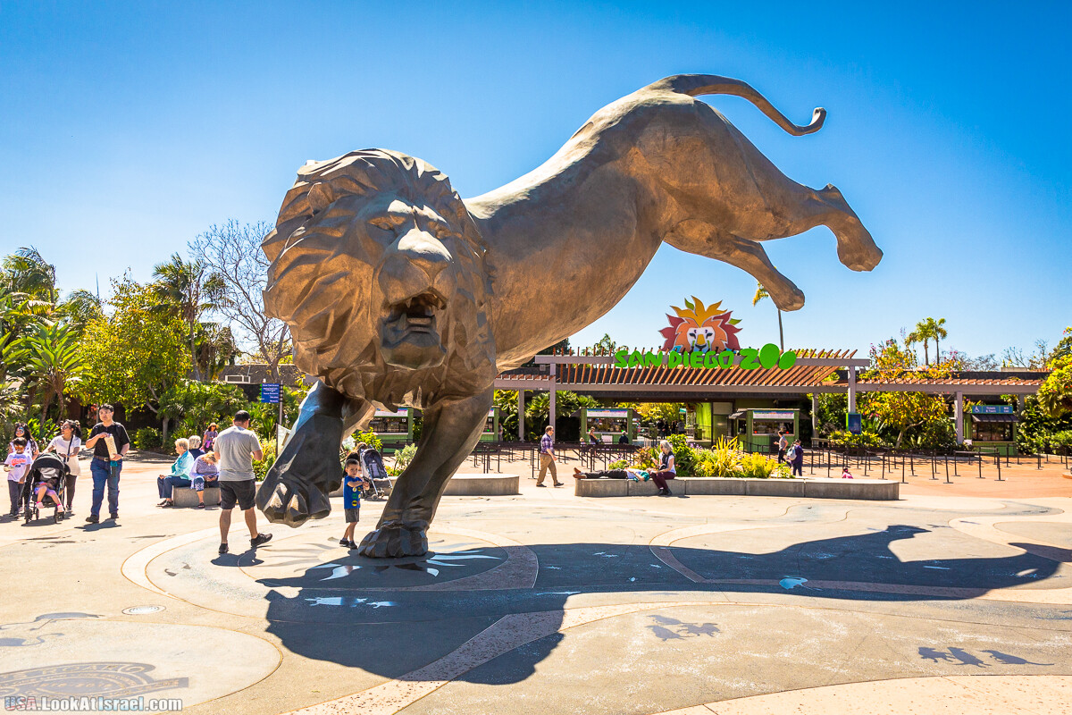 Зоопарк Сан Диего | LookAtIsrael.com - Фото путешествия по Израилю