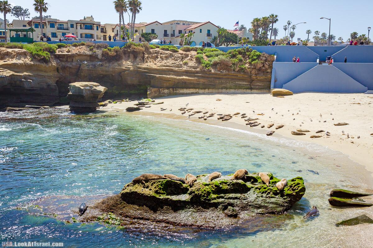 Сан Диего | LookAtIsrael.com - Фото путешествия по Израилю