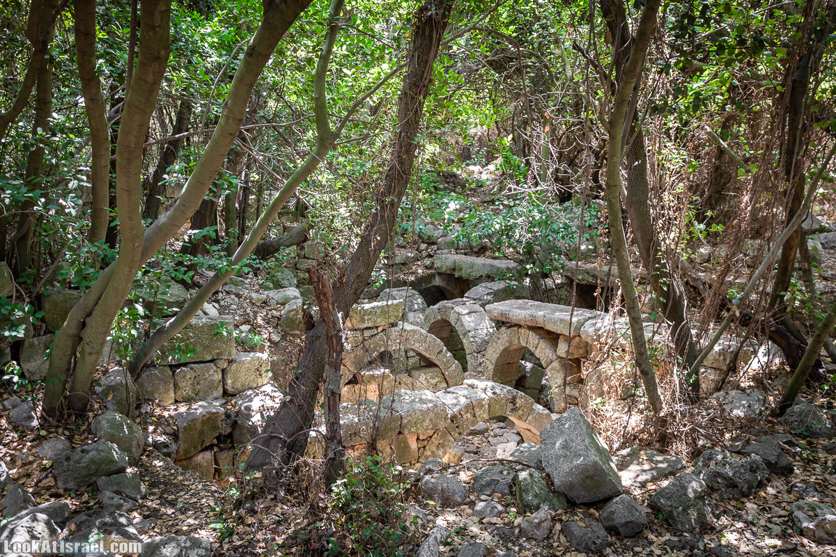 READY | Хурват Цунам - затерянный город на просторах Галилеи