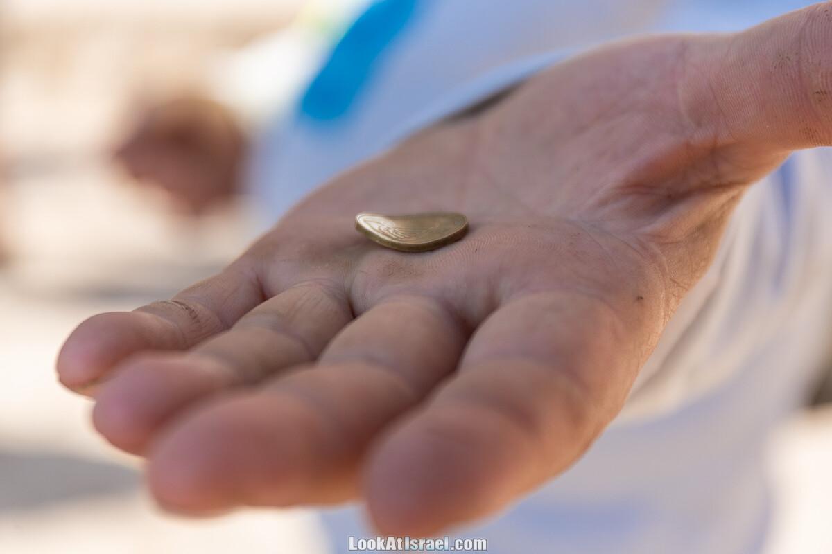 Ури Геллер - повелитель ложек и монет | LookAtIsrael.com - Фото путешествия по Израилю