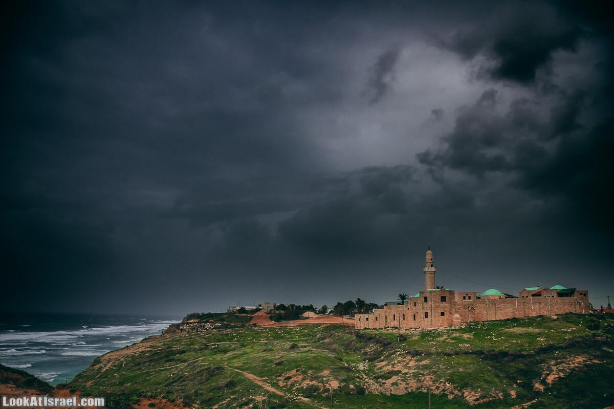 Мечеть Харам Сидна Али | LookAtIsrael.com - Фото путешествия по Израилю