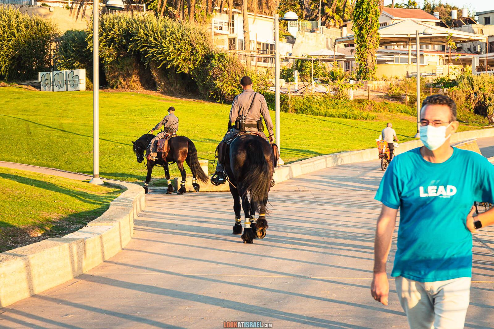 Конные полицейские в парке Мидрон, Тель Авив Яффо