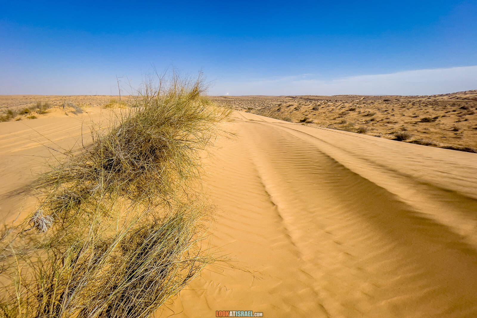 Большая дюна в нахаль лаван, каньон а-лес (лёсс) и пески Халуца, Агур | דיונה גדולה קניון הלס חולות חלוצה שונרה עגור | LookAtIsrael.com - Фото путешествия по Израилю
