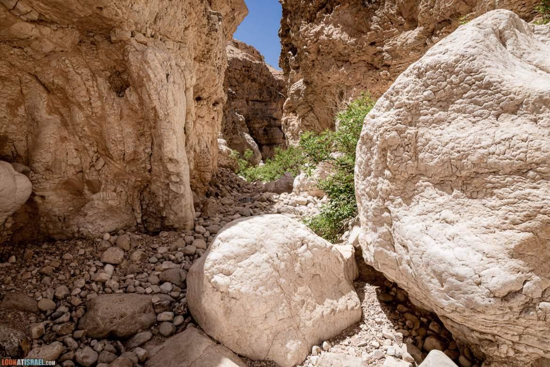 Секретное ущелье в Нахаль Хевер | LookAtIsrael.com - Фото путешествия по Израилю