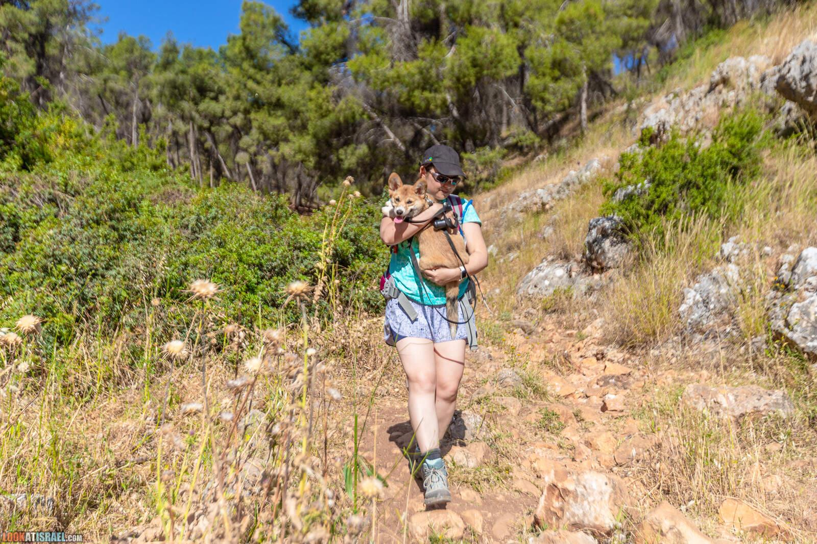 Ущелье Нахаль Ицпор - נחל יצפור - LookAtIsrael.com - Фото путешествия по Израилю