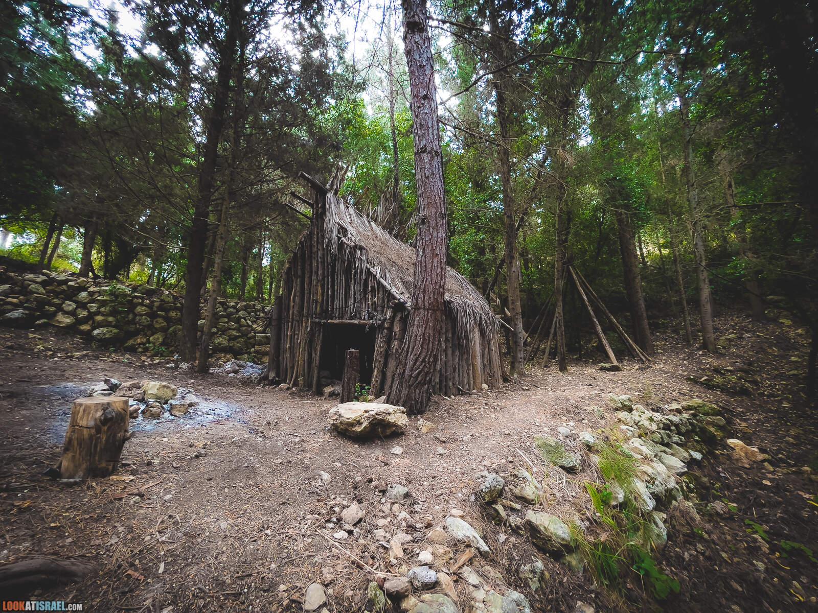 Таинственное сказочное место в лесу на горе Кармель