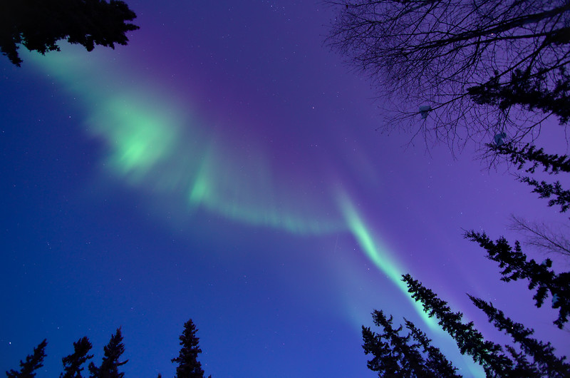 The aurora came out incredibly early, shining brightly in the twilight sky directly overhead.