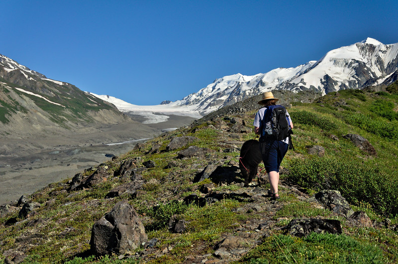 Walking the dog over the Canwell Glacier