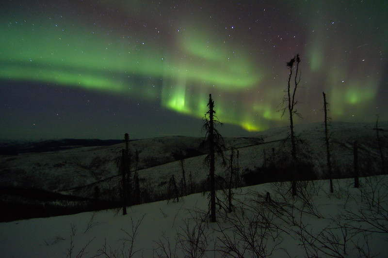 Looking northeast from my tent. It was a pretty tame night as far as aurora, but still beautiful!