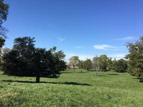 Property for sale at 0 State Road 252, Edinburgh,  IN 46124