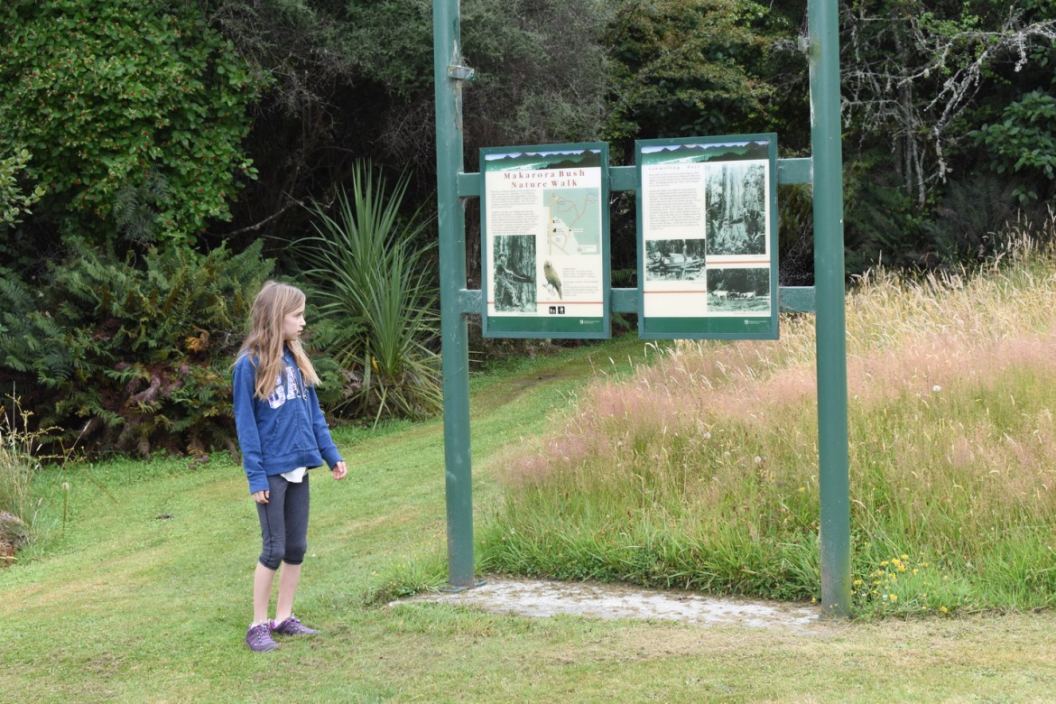 New Zealand South Island Tour - Makarora West. Interpretive signs at the start of a nature trail at Makarora West, New Zealand