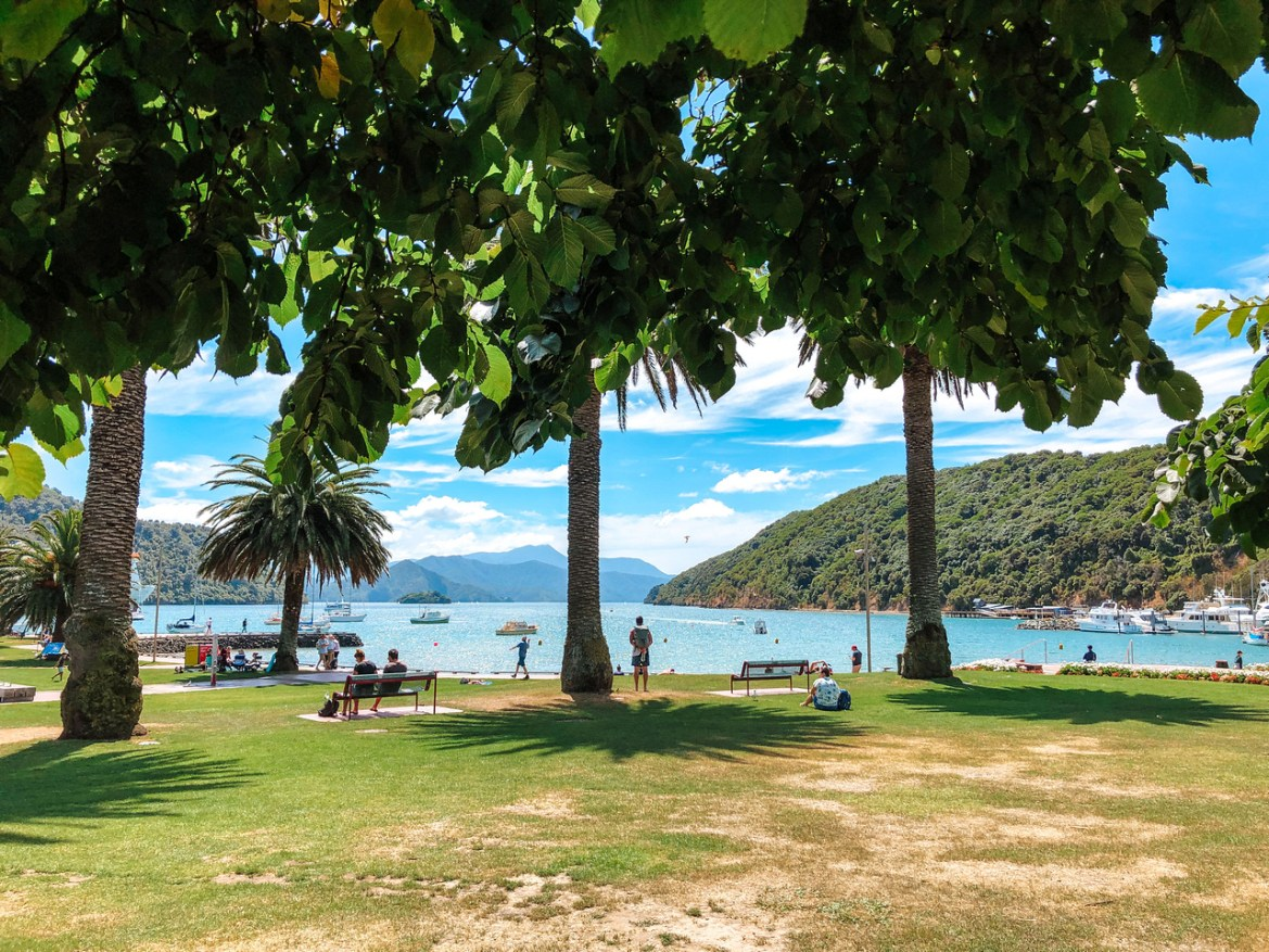 A bright, sunny day at Picton, New Zealand's waterfront city park. Shadows of palm trees on the grass fill the foreground; rolling hills and the harbour recede in the background.