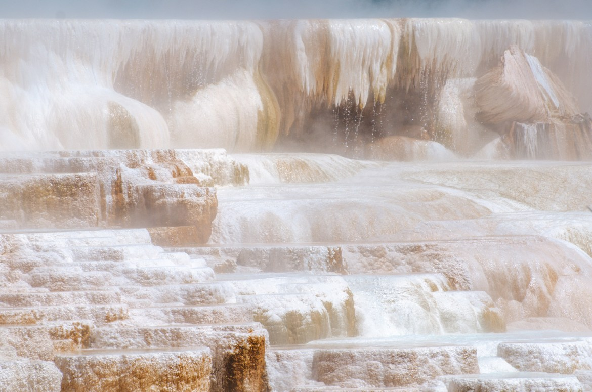 Yellowstone Hot Springs: A close-up of upper Mammoth Hot Springs in Yellowstone National Park, Wyoming.