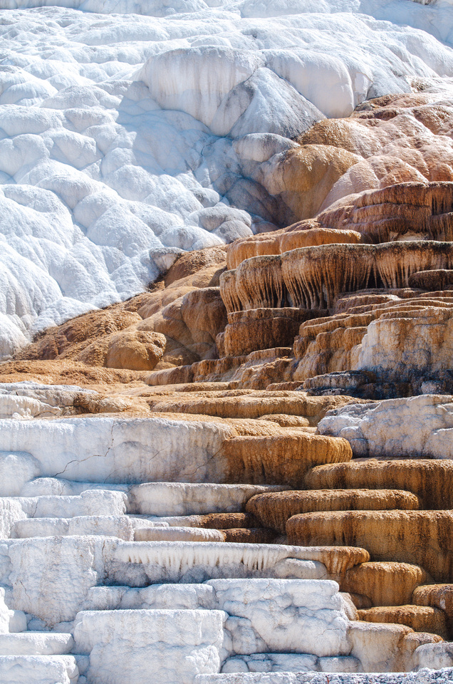 Yellowstone Hot Springs: A wide-angle view of lower Mammoth Hot Springs in Yellowstone National Park, Wyoming.