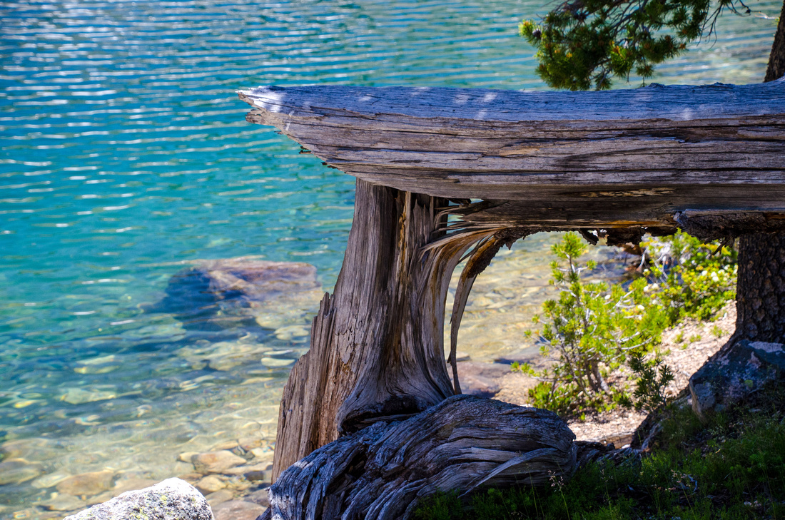 Best Baron Lakes Idaho Hikes - Grandjean Campground and Trailhead to Redfish Lake.  A broken log sits on the edge of Upper Baron Lake, where deep alpine water turns various shades of blue and turquoise.