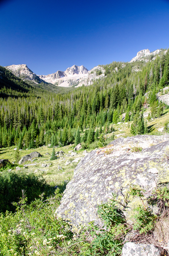 A view of an ancient glacial valley that leads from the Alpine Lake drainage to Redfish Lake.