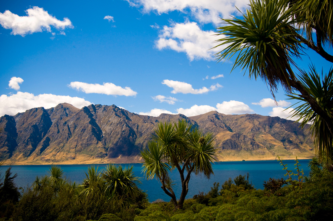 A scenic view of Lake Hawea, North of Wanaka, New Zealand. The view includes several palm trees and the mountains beyond the lake.