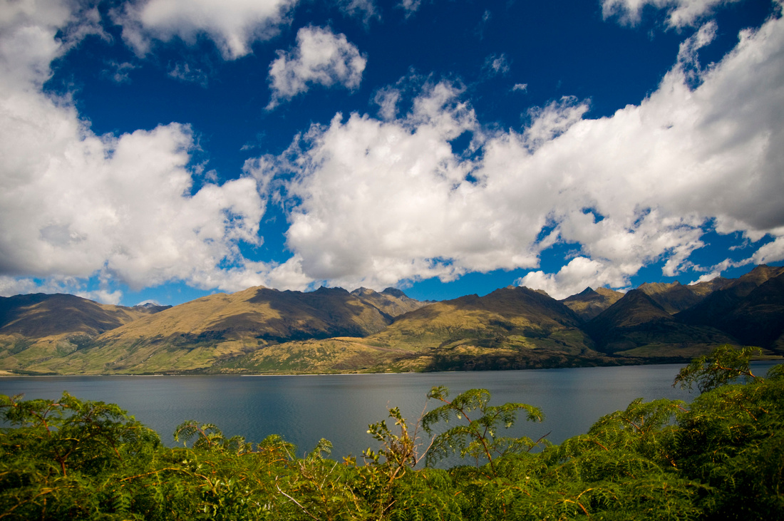 A view looking West over the Northern section of Lake Wanaka, New Zealand. Native bush in the foreground obscures the lake and mountains beyond on a sunny day with cumulus clouds high above the hills.