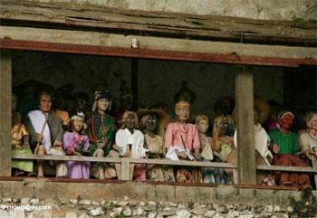 https://i0.wp.com/photos.mongabay.com/06/1019toraja1.jpg