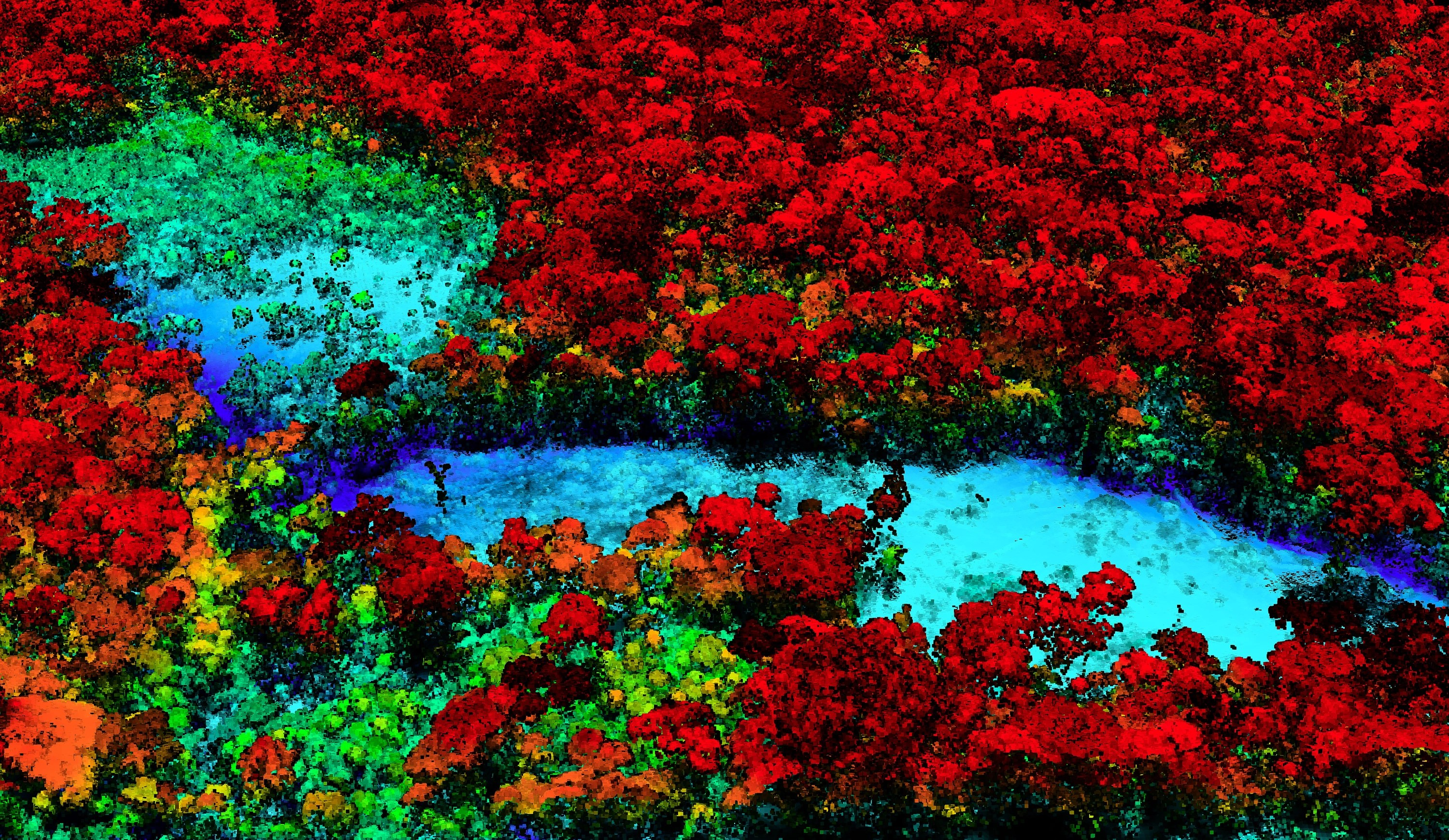 Breakthrough Technology Enables 3d Mapping Of Rainforests