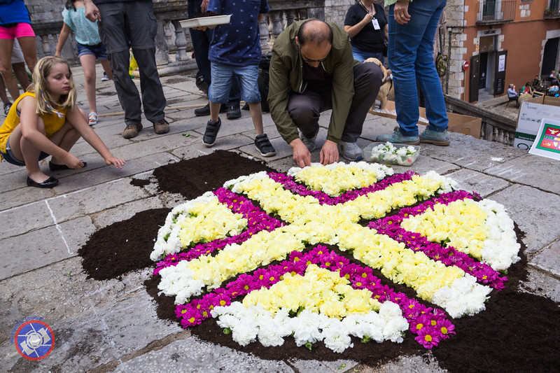 The Start of a Floral Tapestry on the Cathedral Steps, Girona (©simon@myeclecticimages.com)