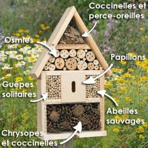 La Maison des insectes