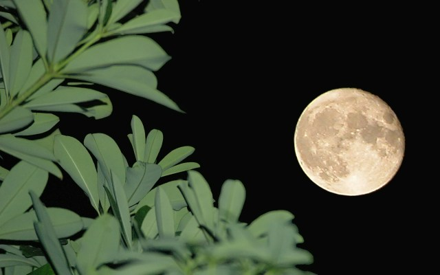 https://i0.wp.com/photos.pouryourheart.com/wp-content/uploads/2018/12/beautiful-moon-in-the-night.jpg?w=640