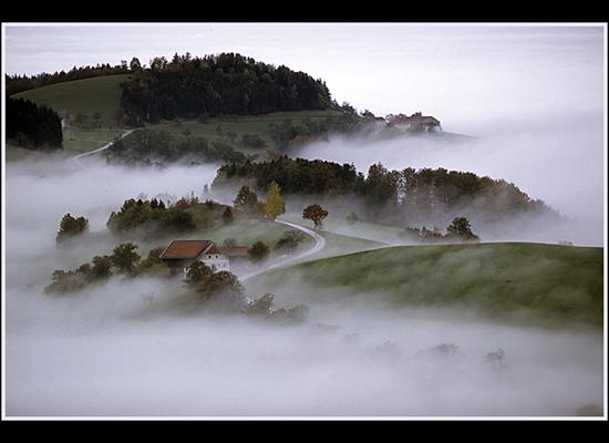 https://i0.wp.com/photos.pouryourheart.com/wp-content/uploads/2018/12/forest-houses29.jpg?w=640