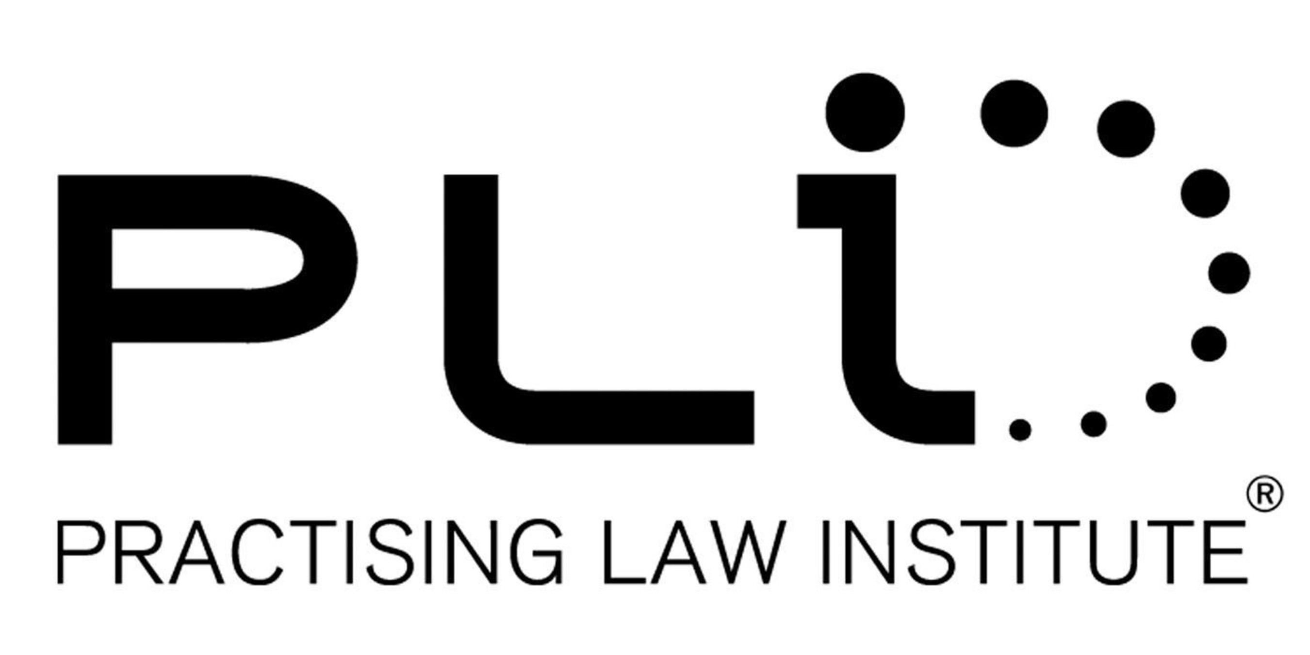Practising Law Institute Appoints Anita Carr Shapiro as