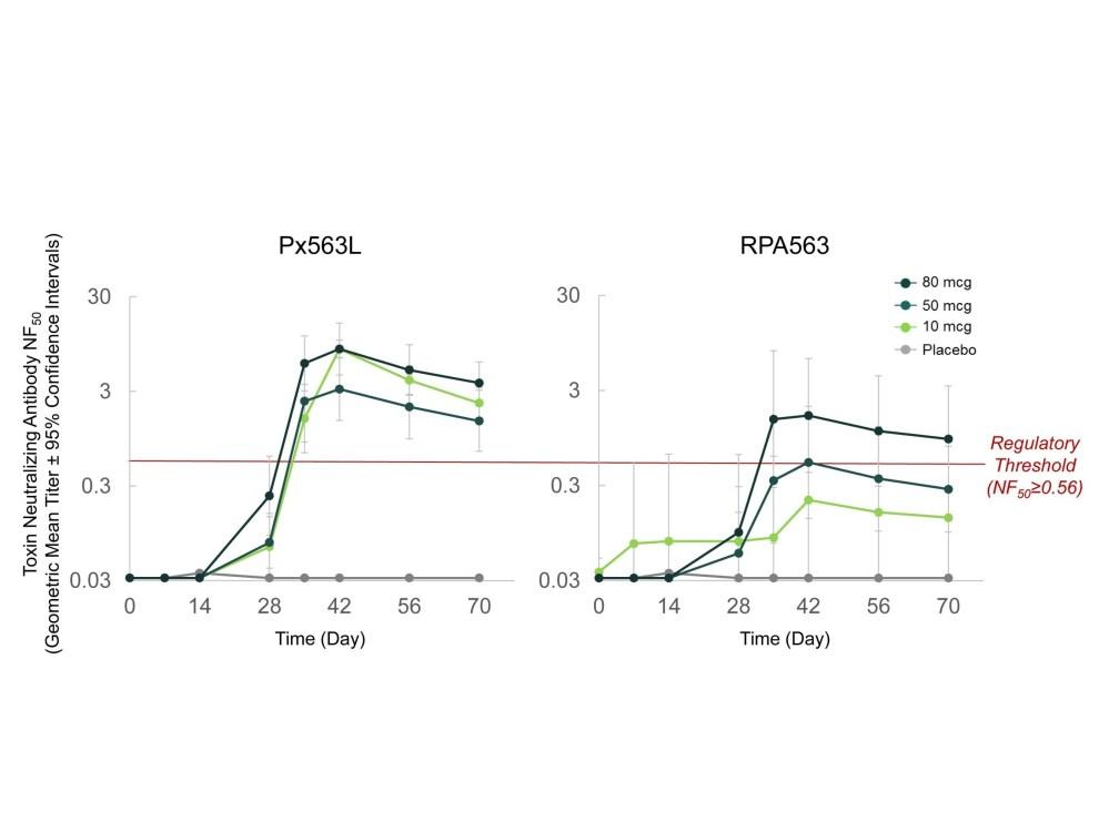 medium resolution of anthrax diagram
