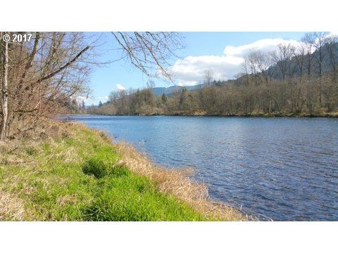 Stunning 217 feet of McKenzie River frontage with walk in access. Close to town. Over 800 feet off of Highway to build your dream home. Wow!! a Must see!!Come and enjoy the river life.