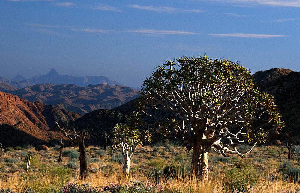AiAis Richtersveld Transfrontier Park  Travel guide Map  More