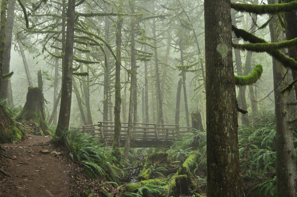 Wallace Falls State Park by Wikipedia