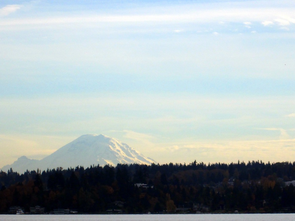 View of Mount Rainier From Argosy Cruise Line's Tour of Lake Union and Lake Washington