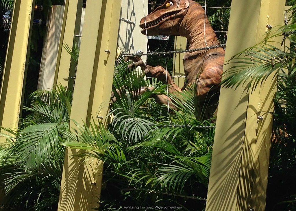 A Velociraptor in its pen at Universal's Islands of Adventure