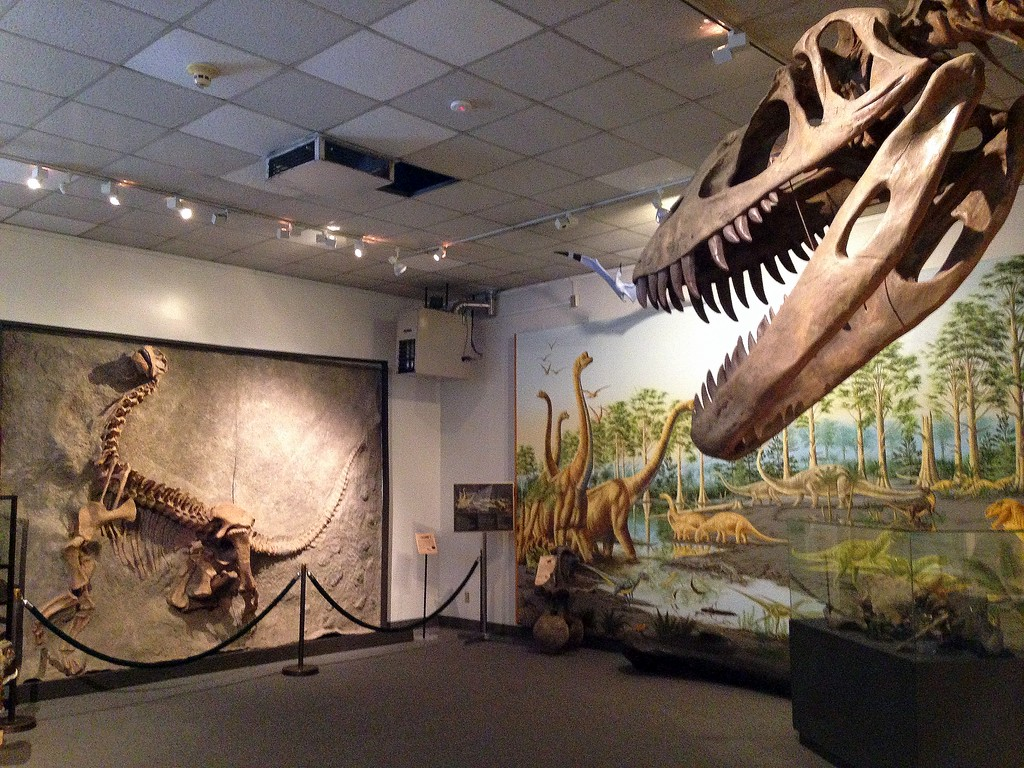Dino Bones and More at the BYU Museum of Paleontology in Provo, Utah