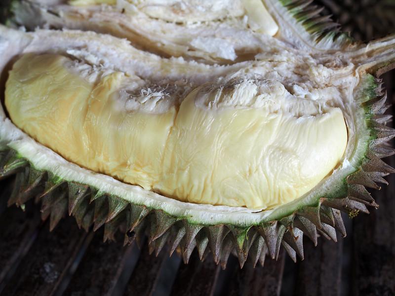 arancillo philippines durian