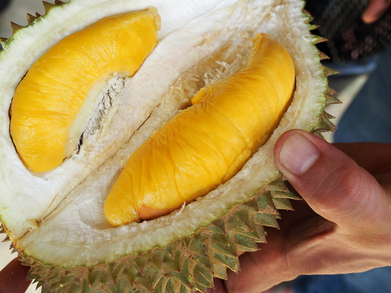 Inside a Malaysia Durian Export Factory -