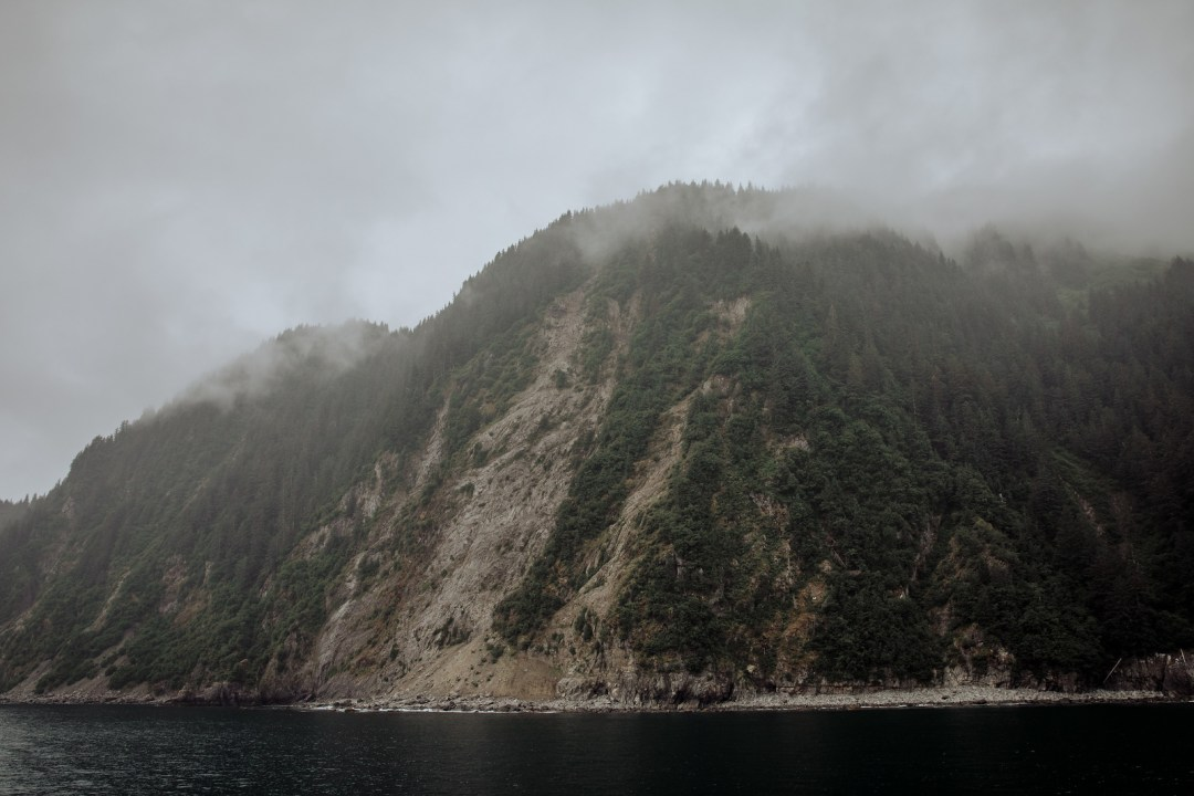 Scenery of Resurrection bay during  a major marine tour of Kenai Fjords National Park out of seward, Alaska. Taken by Kimberly Kendall of Clicking with Kim