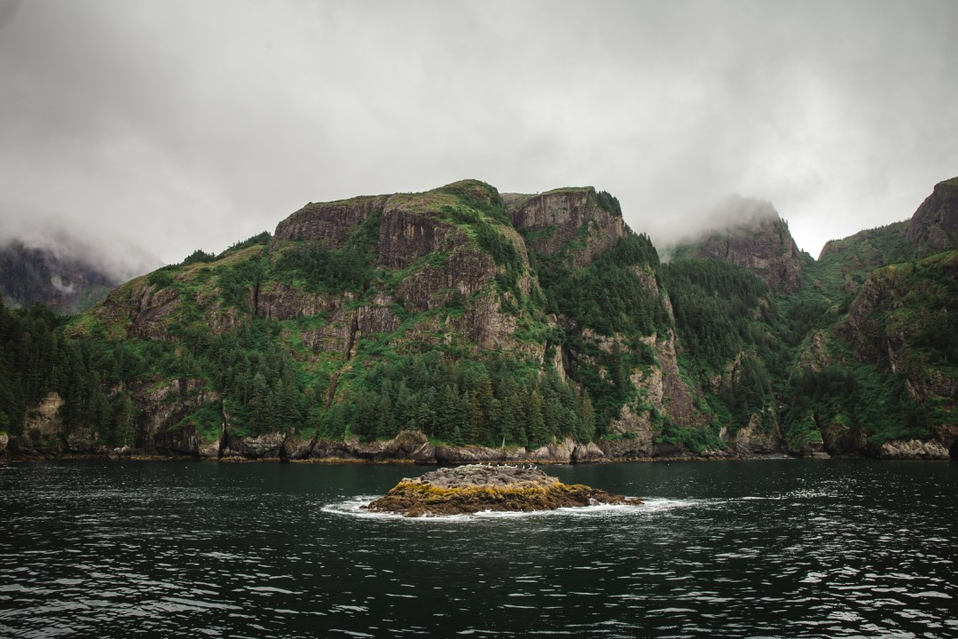 Scenery and sea lions in Resurrection bay during  a major marine tour of Kenai Fjords National Park out of seward, Alaska. Taken by Kimberly Kendall of Clicking with Kim