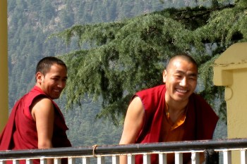 tibetan monastery in dharamsala